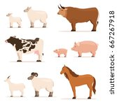 animals on farm. lamb  piglet ... | Shutterstock .eps vector #667267918