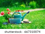 home gardening and flower... | Shutterstock . vector #667310074