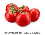 tomato. fresh tomato with drops ... | Shutterstock . vector #667342288