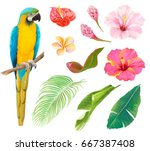 collection of plants  green... | Shutterstock .eps vector #667387408