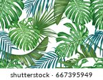 Tropical Leaves. Palm And...