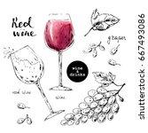 hand drawn ink sketch of wine... | Shutterstock .eps vector #667493086