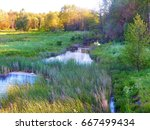 river field and forest.... | Shutterstock . vector #667499434