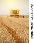 combine harvester machine... | Shutterstock . vector #667510390