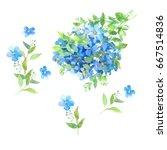 set of watercolor bouquet of... | Shutterstock . vector #667514836