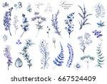 big set watercolor elements  ...   Shutterstock . vector #667524409