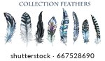 watercolor collection of... | Shutterstock . vector #667528690