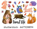 watercolor set of forest... | Shutterstock . vector #667528894