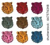 international tiger day. tiger... | Shutterstock .eps vector #667576348