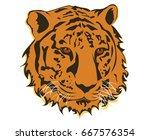 international tiger day. tiger... | Shutterstock .eps vector #667576354