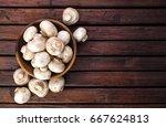 mushrooms  top view   Shutterstock . vector #667624813
