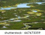 elkhorn slough reserve ... | Shutterstock . vector #667673359