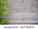 old wooden planks   rustic...   Shutterstock . vector #667762870