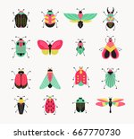 bugs  insects  butterfly ... | Shutterstock .eps vector #667770730