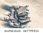 in hand debris or smithereens.... | Shutterstock . vector #667799314