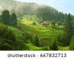 beautiful summer morning in...   Shutterstock . vector #667832713