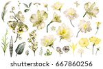 yellow tropical collection with ... | Shutterstock . vector #667860256