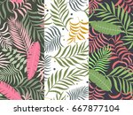 set of three seamless floral... | Shutterstock .eps vector #667877104