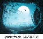 halloween night background. 3d... | Shutterstock . vector #667900654