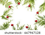 wide arch shaped christmas... | Shutterstock . vector #667967128