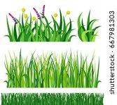 green grass nature design... | Shutterstock .eps vector #667981303