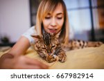 Stock photo woman plays with a rope with bengal cat 667982914