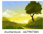 nature trace and sun rice in... | Shutterstock .eps vector #667987384