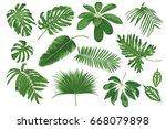 big set of tropical leaves.... | Shutterstock .eps vector #668079898
