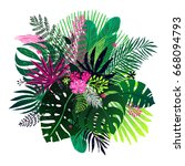 exotic bouquet of tropical... | Shutterstock .eps vector #668094793