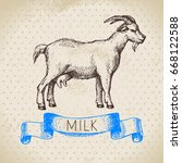 hand drawn sketch milk products ... | Shutterstock .eps vector #668122588