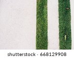 straight line grass and space... | Shutterstock . vector #668129908
