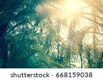 palm trees in alicante in spain ... | Shutterstock . vector #668159038