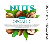 vector frame of realistic nuts... | Shutterstock .eps vector #668194204