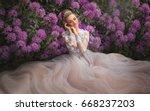 beautiful romantic girl in... | Shutterstock . vector #668237203