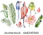 watercolor set with tropical... | Shutterstock . vector #668240560