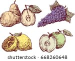 sketches of the ripe fruit | Shutterstock .eps vector #668260648