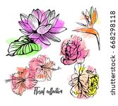 hand drawn floral collection on ... | Shutterstock .eps vector #668298118