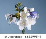 small bouquet of white...   Shutterstock . vector #668299549