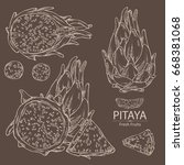 collection of pitaya fruit ... | Shutterstock .eps vector #668381068