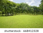 sunlight green lawn surrounded... | Shutterstock . vector #668412328