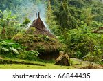 Small Kogi Hut Built In The...