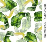 beautiful watercolor seamless... | Shutterstock . vector #668464780
