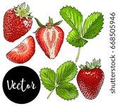 vector strawberries set | Shutterstock .eps vector #668505946