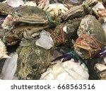 Crab Called Portunus Pelagicus...