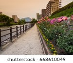 rose blooming riverside garden | Shutterstock . vector #668610049