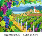 Rural Landscape With Vineyard...