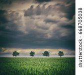 row of trees on a green field... | Shutterstock . vector #668705038