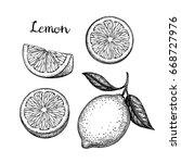 lemon set. isolated on white...   Shutterstock .eps vector #668727976