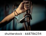 female hands with cage cell.... | Shutterstock . vector #668786254