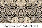 Stock vector texture pattern black white snake 668820334